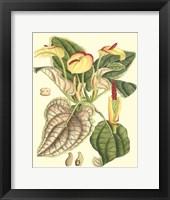 Botanical Fantasy III Fine Art Print