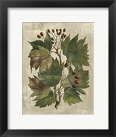 Printed Deshayes Trees I Fine Art Print