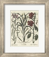 Floral III Giclee