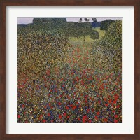 Field of Poppies, c.1907 Fine Art Print