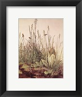 Tall Grass Fine Art Print