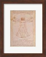 Study of Human Proportions Fine Art Print