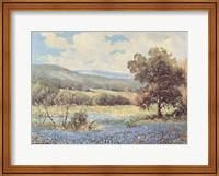 Fields of Blue Fine Art Print