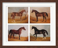 Stable Mates (Set of Four) Fine Art Print
