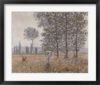 Fields in Spring Fine Art Print
