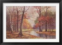 Autumn Glade Fine Art Print