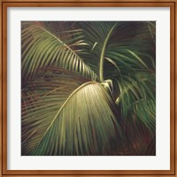 Tropical Seclusion Fine Art Print