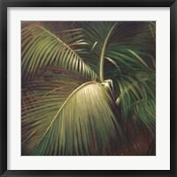 Tropical Seclusion Fine Art Print