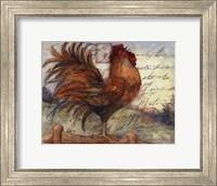 Le Rooster I Fine Art Print