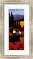 Tuscan Poppies Panel I Fine Art Print