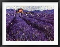 Lavender Fields I Fine Art Print