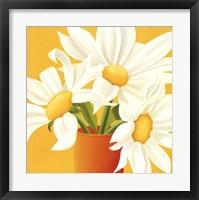 Sunny Daisies Fine Art Print