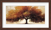 Transition Fine Art Print