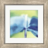 Blue Indigo Fine Art Print