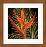Birds of Paradise I Fine Art Print