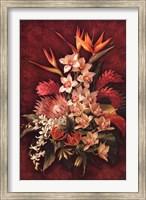 Rare Exotics II Fine Art Print