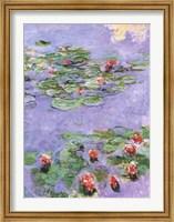 Water Lilies, c. 1914-1917 Fine Art Print