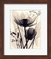 Lotus and Grasses Fine Art Print