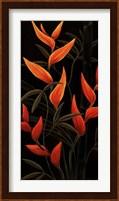 Sunburst Blossoms Fine Art Print