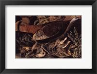 Wild Turkey Female Fine Art Print