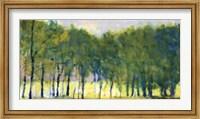 Soft Green Grove Fine Art Print