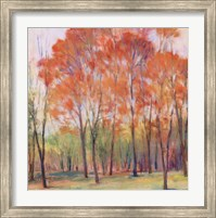 Tree Grouping I Fine Art Print