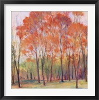 Tree Grouping I Fine Art Print