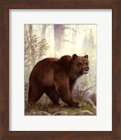 Grizzly Mama Fine Art Print