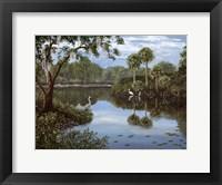 Three Cranes Swamp Fine Art Print