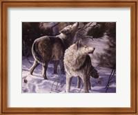 Winter Wolves Fine Art Print