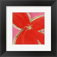 Red Flower With Pink Background Fine Art Print
