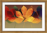 Leaf Dance II Fine Art Print