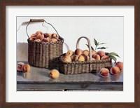 Summer Peaches Fine Art Print
