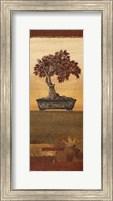 Bonsai IV - Mini Fine Art Print