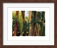 Bamboo Ballet Fine Art Print