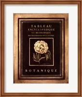 Les Fleurs De Paris II Fine Art Print