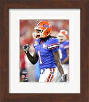Reggie Nelson - 2007  Florida Gators  Action Fine Art Print