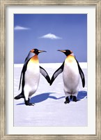 Penguin Love Wall Poster