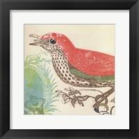 Red Bird Fine Art Print