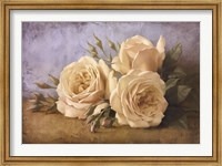 Roses From Ivan Fine Art Print
