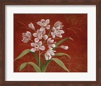 Say it with Orchids I Fine Art Print