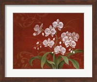 Say it with Orchids II Fine Art Print