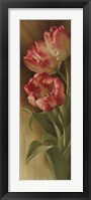 Spring's Parrot Tulip II Fine Art Print