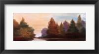 Pine Tree Lake I Fine Art Print