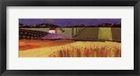 Little Patch of Lavender Fine Art Print