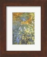 Yellow Iris Fine Art Print