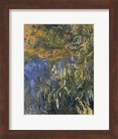 Iris, 1914-1917 Fine Art Print