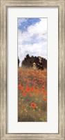 Field of Poppies (panel) Fine Art Print
