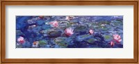 Water Lilies (blue and purple) Fine Art Print