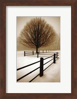 Solitude Fine Art Print